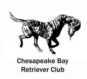 Chesapeake Bay Retriever Club